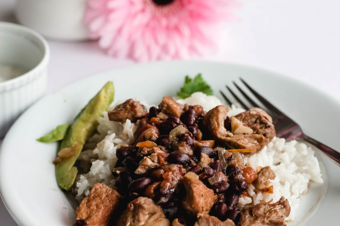 Plate tomatillo and pork stew over rice