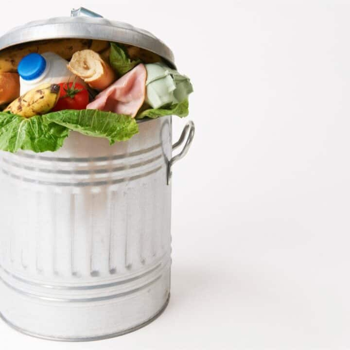 pail of garbage wiith food waste