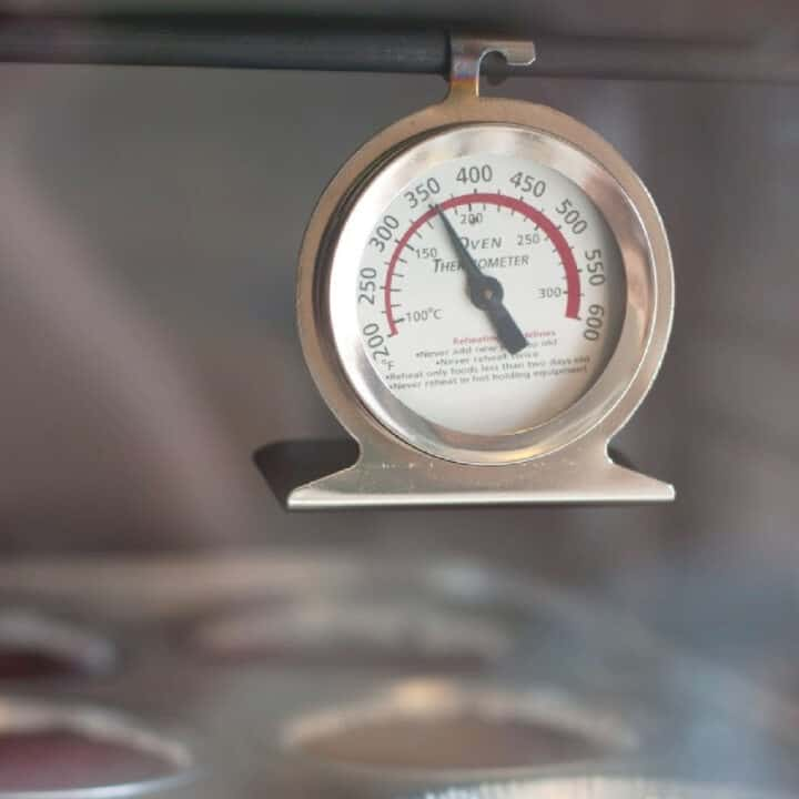 oven thermometer hanging from oven rack